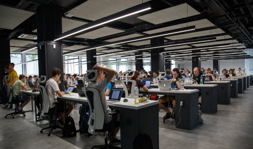 Employees working in a collaborative workspace