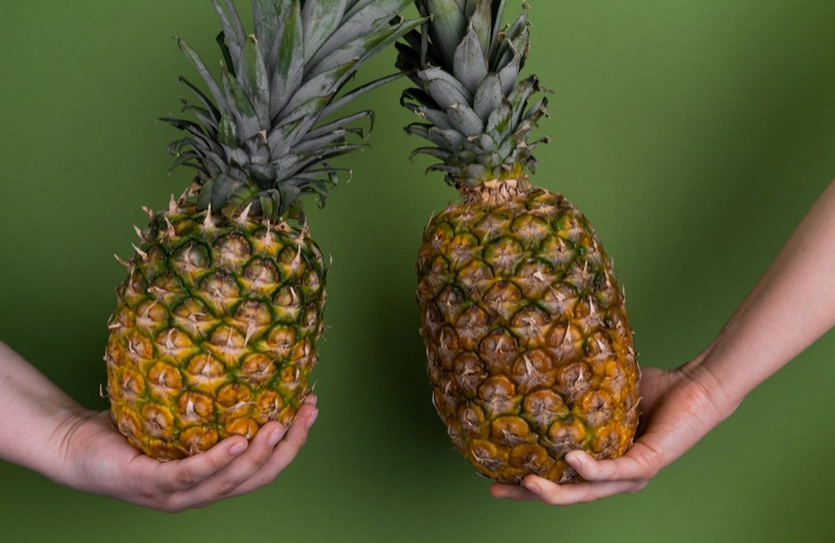 Two different hands holding a pineapple each